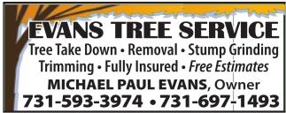 Take Down, Removal, Stump Grinding.
