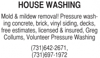 Mold & Mildew Removal!